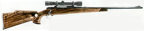 Hole rifle stock thumb